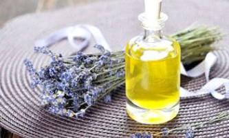 Ефірна олія лаванди, властивості, застосування, рецепти для шкіри, волосся і лікування, протипоказання