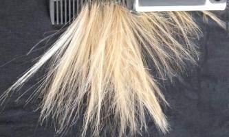 Яких вітамінів не вистачає твоєму волоссю і чому вони випадають?