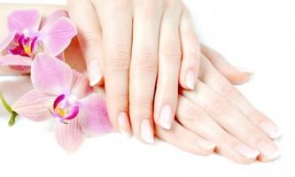 Яке масло вибрати для догляду за нігтями