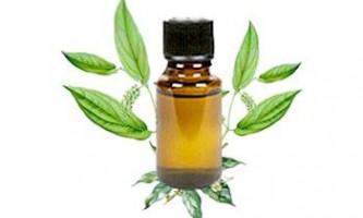 Камфорне масло, застосування, лікувальні властивості, 17 рецептів домашнього використання