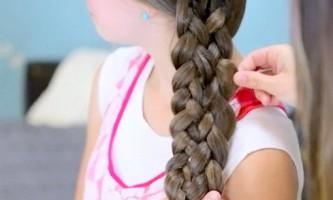 Мереживна лінива коса
