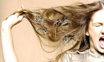 Визначаємо в чому причина випадання волосся у жінок