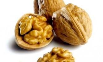 Корисні властивості волоського горіха в лікуванні і профілактиці