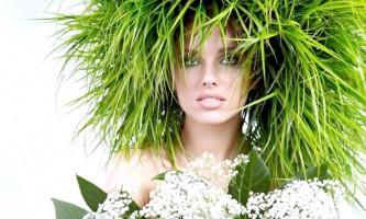 Дивовижні властивості трав`яних масок для природної краси волосся